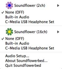 soundflower_4.jpg