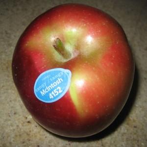 McIntosh-Apple.jpg