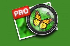 icono_focus_2_pro