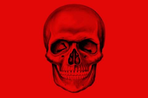Skull-calavera