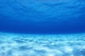 241495_241495-undersea-hd-wallpaper-174x116.jpg