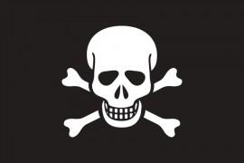 danger_peligro_calavera-Bug_malware